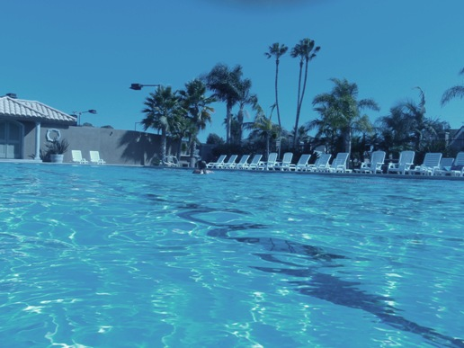 Newport Shores Pool