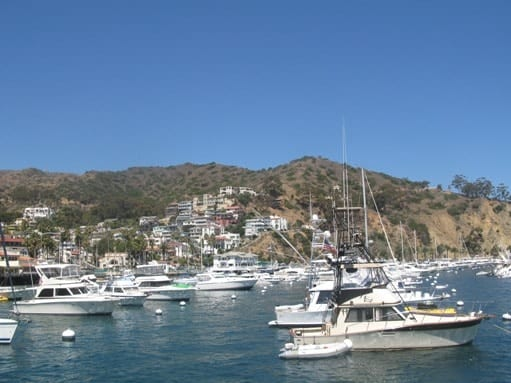 avalon in catalina island