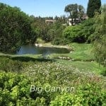 Big Canyon in Newport Beach | Market Update | February, 2013