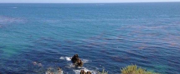 corona del mar coastline