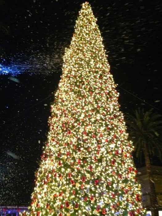 Fashion Island Tree Lighting Ceremony