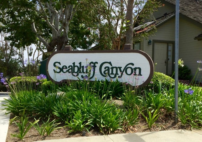 Seabluff Canyon condos for sale