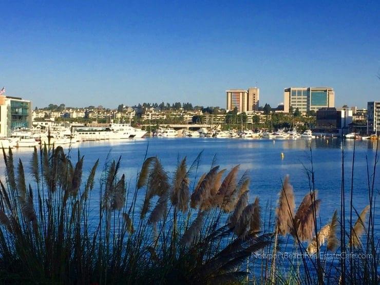 Newport Harbor in Newport Beach CA
