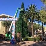 Fashion Island Annual Holiday Tree Lighting 2016