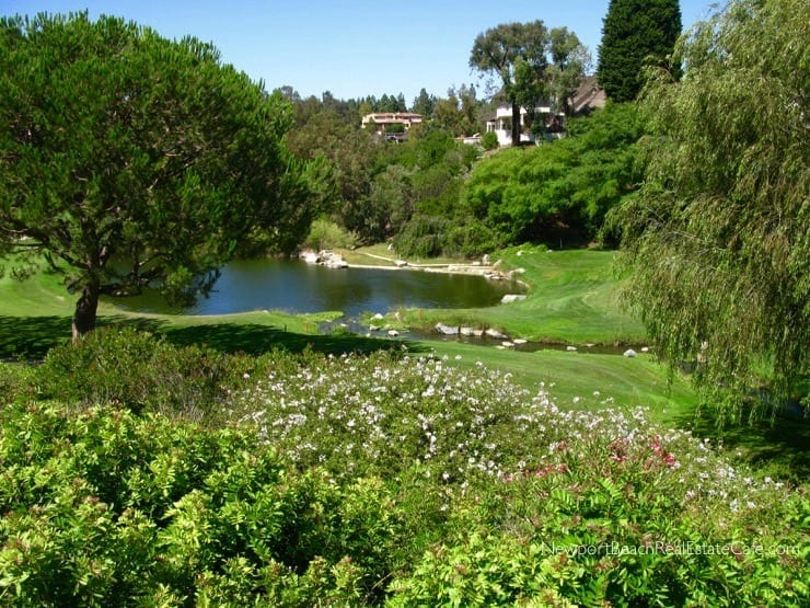 Big Canyon Deane homes for sale Newport Beach