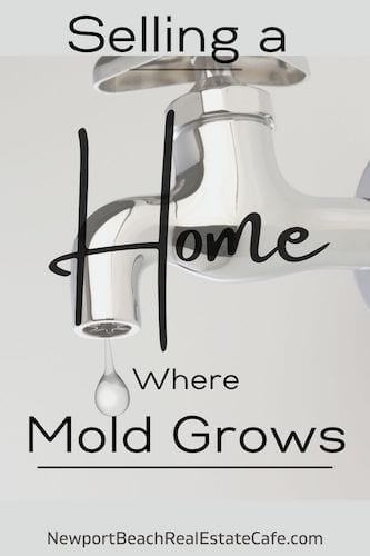 Selling a Home Where Mold Grows