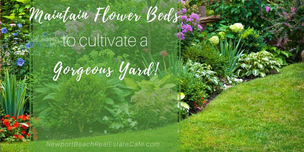 Maintain flower beds to cultivate a gorgeous yard