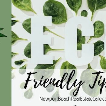 Eco-Friendly Tips for a Sustainable Home